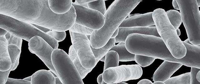 lmicrobiologia-dioxido-cloro_labprocess
